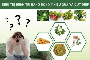 Chữa Bệnh Trĩ Nội Ngoại Bằng Đông Y
