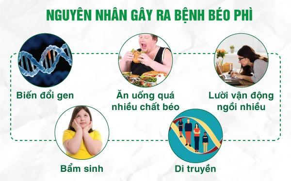 Nguyên nhân gây béo phì vùng bụng