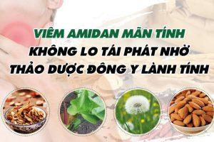 bài thuốc đông y chữa viêm amidan